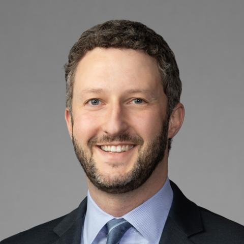 Ari W. Krigel, Partner, Freeborn