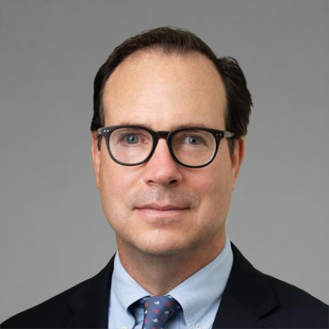 David A Pellegrino, Partner, Freeborn